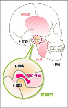 痛い 下 顎 の