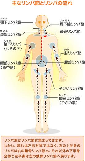 リンパ 痛い 鎖骨